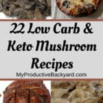 Low Carb Keto Mushroom Recipes collage
