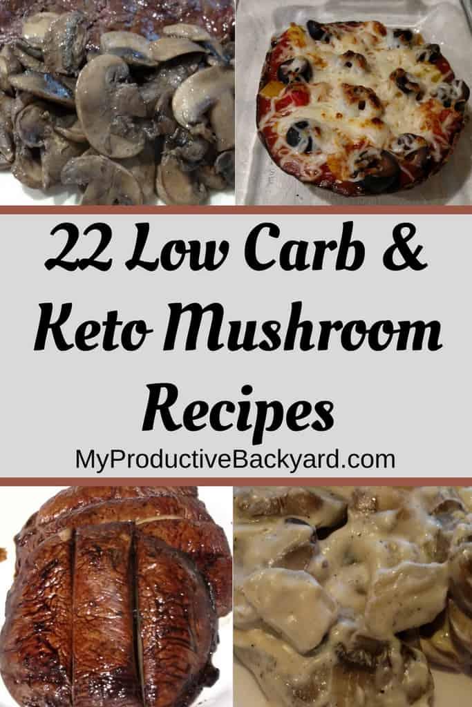 22 Low Carb Keto Mushroom Recipes