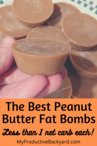 The Best Peanut Butter Fat Bombs