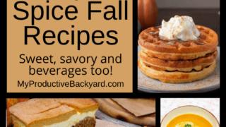 51 Low Carb Keto Pumpkin Spice Fall Recipes Pinterest Pin