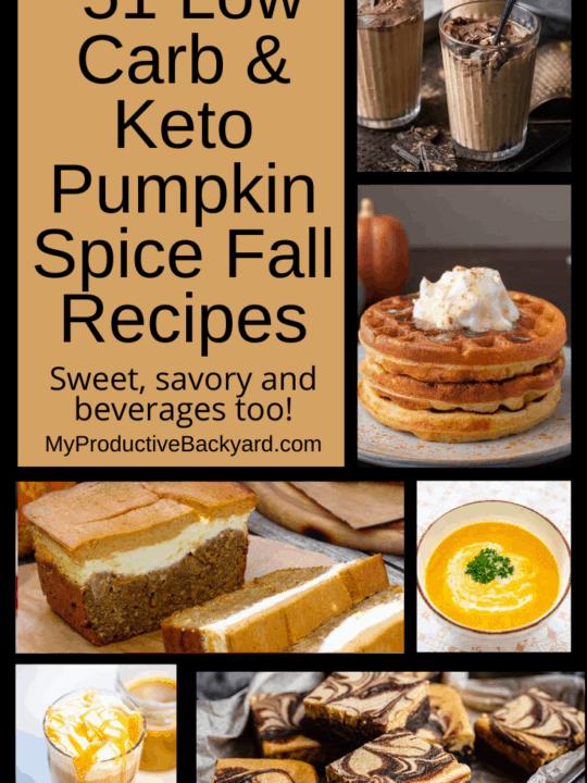 51 Low Carb Keto Pumpkin Spice Fall Recipes