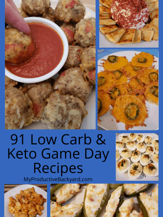 91 Low Carb Keto Appetizer Recipes Pinterest Pin