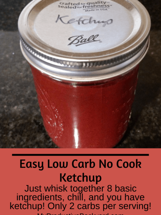 Easy Low Carb No Cook Ketchup Pinterest pin