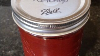 Easy Low Carb No Cook Ketchup