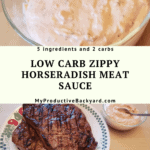 Low Carb Zippy Horseradish Meat Sauce Pinterest pin