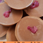 Peanut Butter Jelly Fat Bombs Pinterest pin