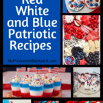 Over 100 Red White and Blue Patriotic Recipes Pinterest Pin