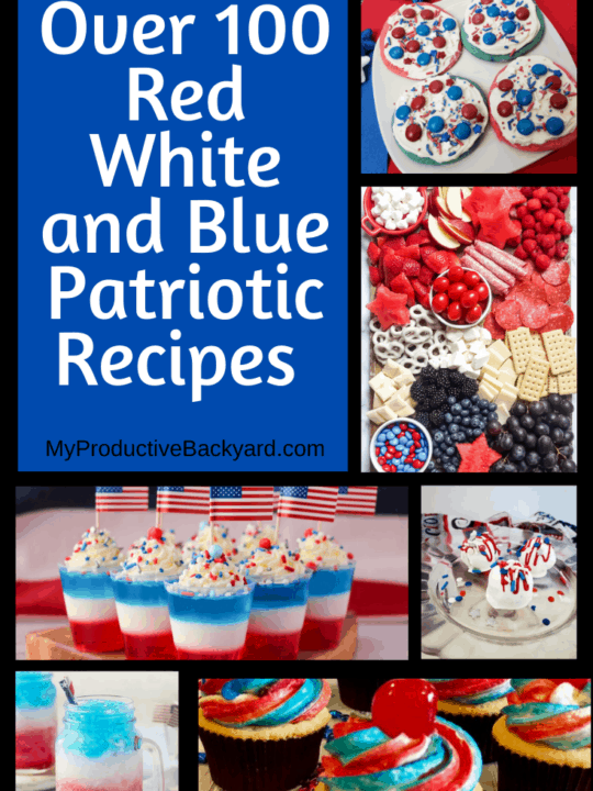 Over 100 Red White and Blue Patriotic Recipes