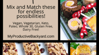 Over 100 Lunchbox Ideas and Recipes Pinterest Pin