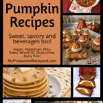 Over 100 Pumpkin Recipes Pinterest Pin