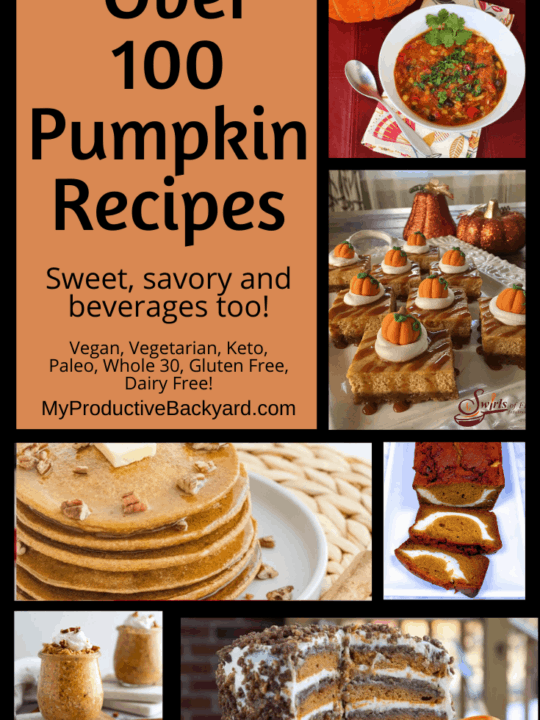 Over 100 Pumpkin Recipes